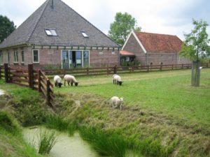 Scharrelboerderij Wadwaai op Facebook